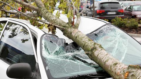 I stock storm damage