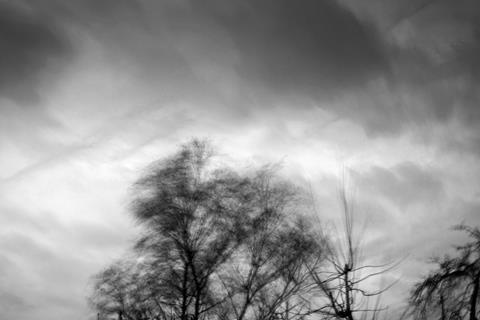 Storm desmond