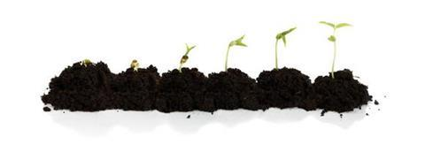 growth5647021
