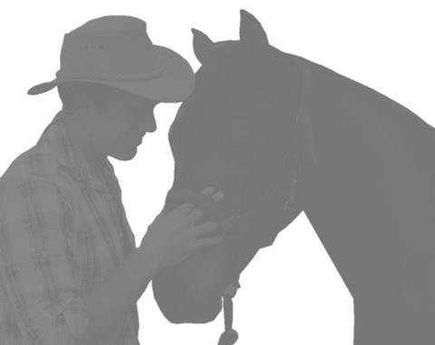 horsewhiperer4