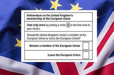 Eu flag voting slip